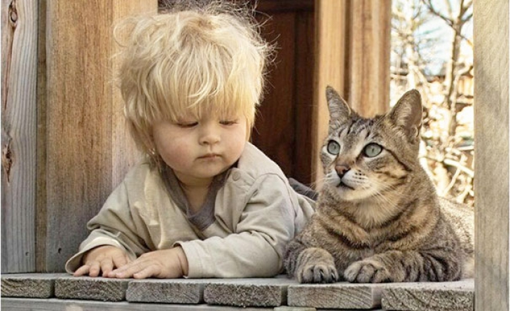 kids-with-cats-211__605_30300200