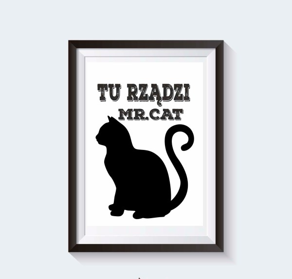 plakaty na ścianę koty do pobrania grafika