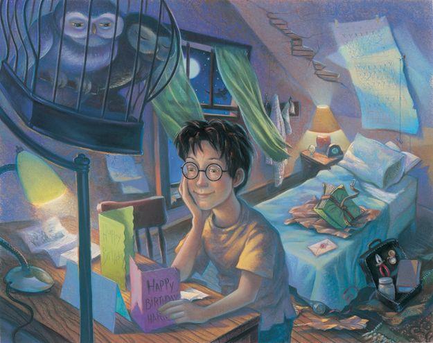173b076f1a34bce3f0f84917ff054540--harry-potter-illustrations-book-illustrations
