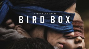 Bird Box: A Fancast Review