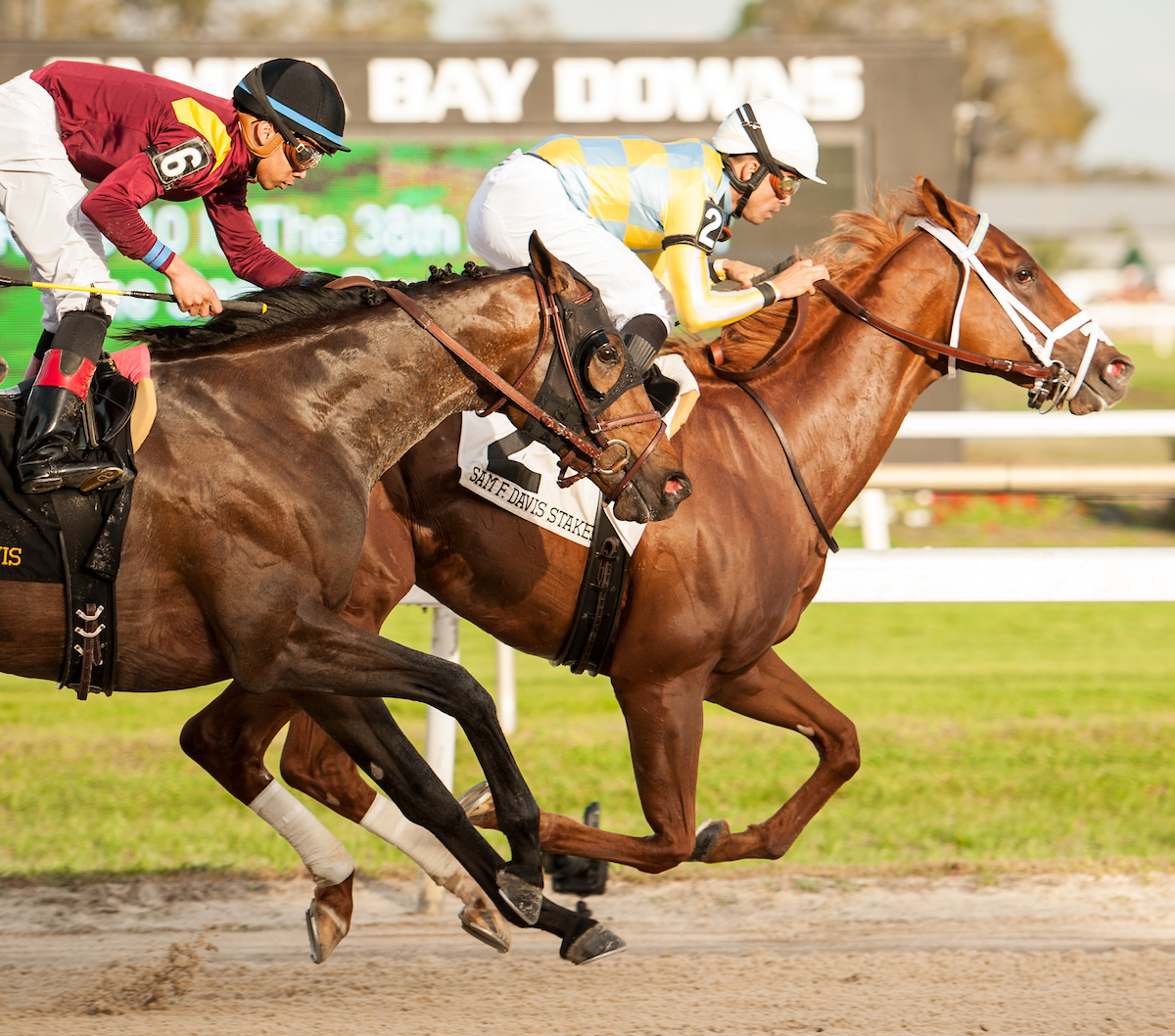Two More Kentucky Derby Contenders Emerge Results Inside
