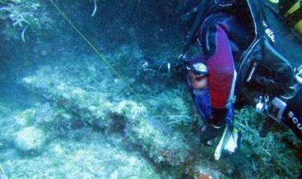 Favignana,recuperata un'ancora romana