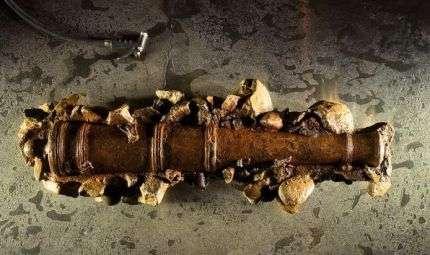I cannoni del Pirata Barbanera