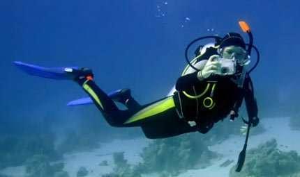 Fotocontest subacqueo a La Spezia