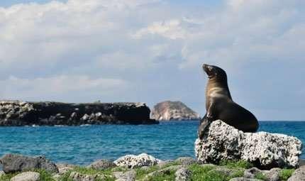 Vinci le Galapagos col National Geographic