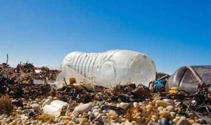 Dal mare la soluzione per eliminare la plastica