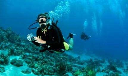 A Punta Ala gara di fotografia subacquea