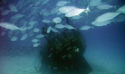 Turismo subacqueo, promuoverlo affondando navi militari?