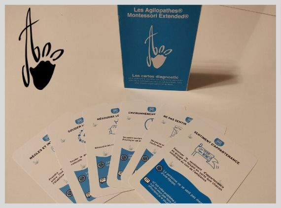 Cartes diagnostic Montessori Extended