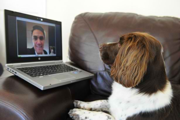 Image result for Skyping With Your Dog