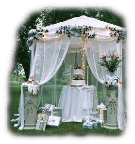 Wedding Canopy DIY