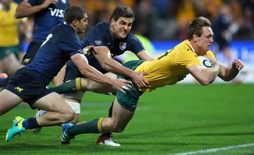 Dane Haylett-Petty scores for Australia