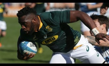 Rugby Championship, South Africa, Argentina, Wallabies, All Blacks, Bledisloe Cup, Rugby Championship Video Highlights ,Video Highlights, Video,