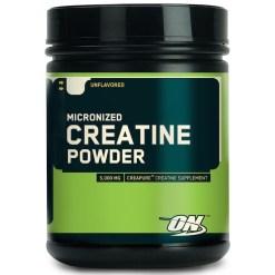 optimum-nutrition-micronized-creatine-powder-300g