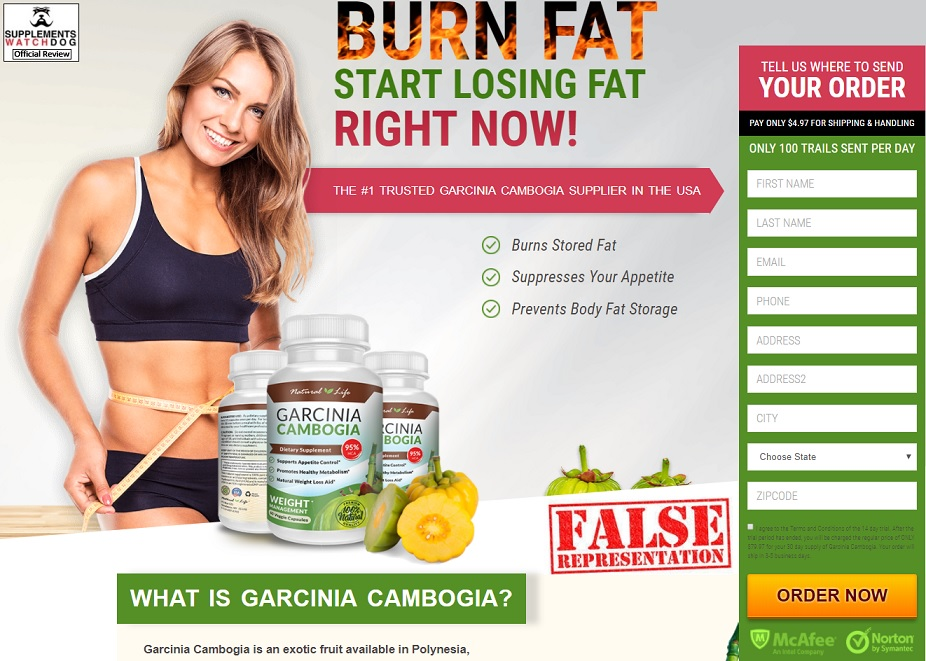 Yes You Can Diet Plan Does It Really Work