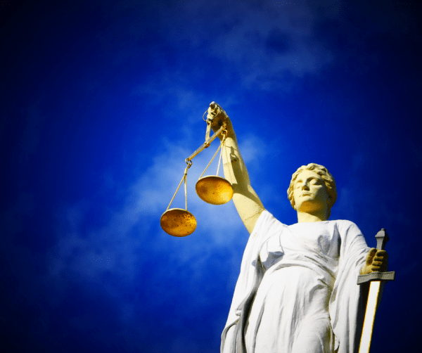 Action Alert: Tell Dane County Prosecutor to Hold ...