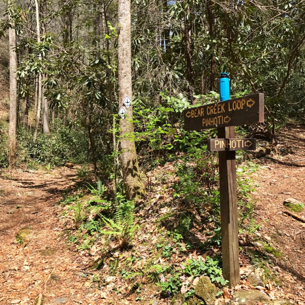 Bear Creek / Pinhoti Trail Junction