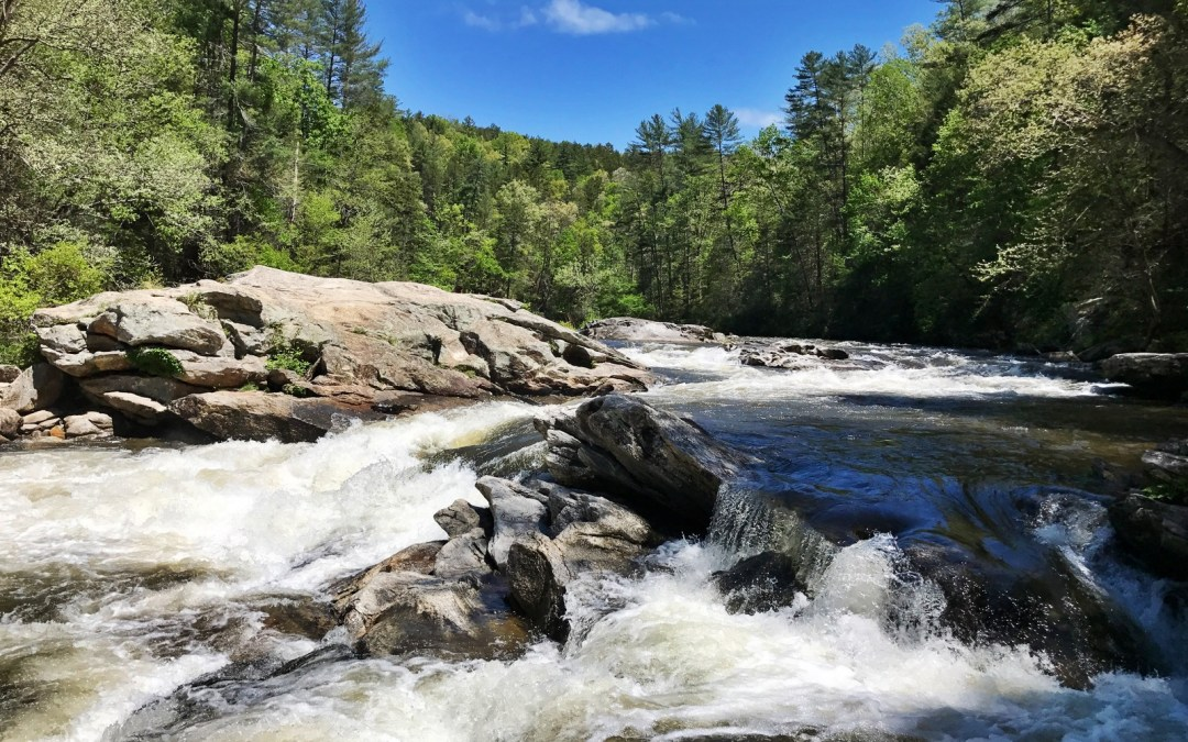 Day 38: Chattooga Wild and Scenic River & Andrew Pickens RD / Sumter NF