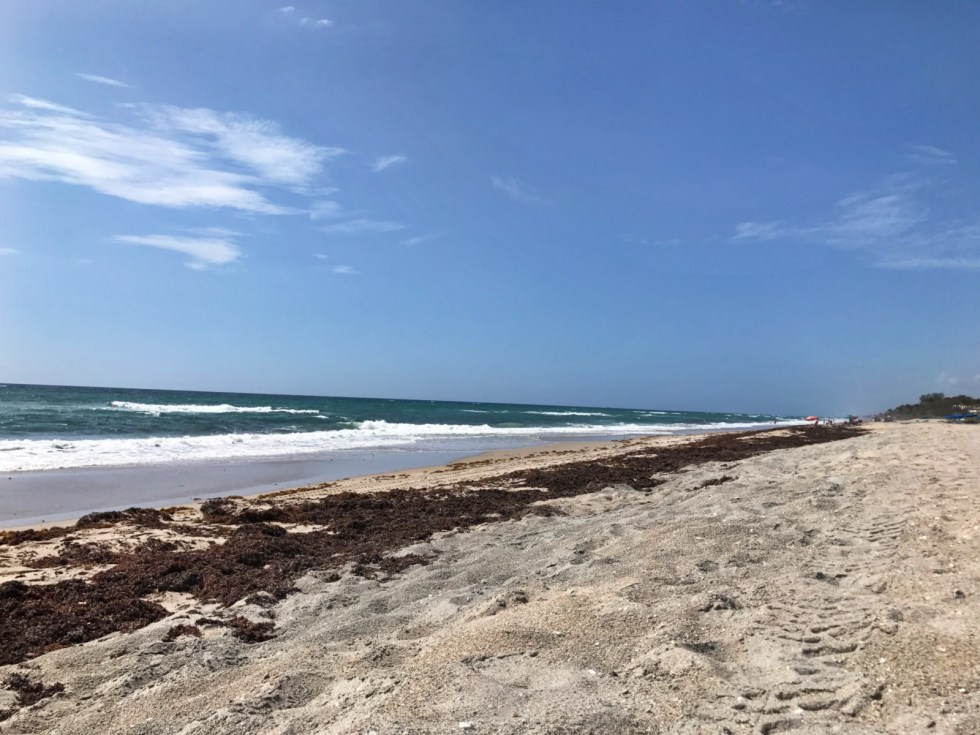 No Crowds At Ocean Ridge Hammock Park Beach!