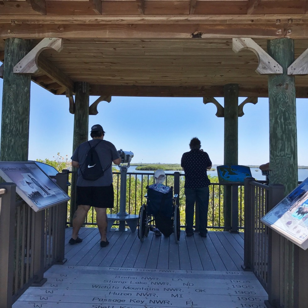 Accessible Viewing Area At The End Of The Boardwalk