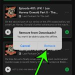 how to delete Spotify podcast download on iPhone