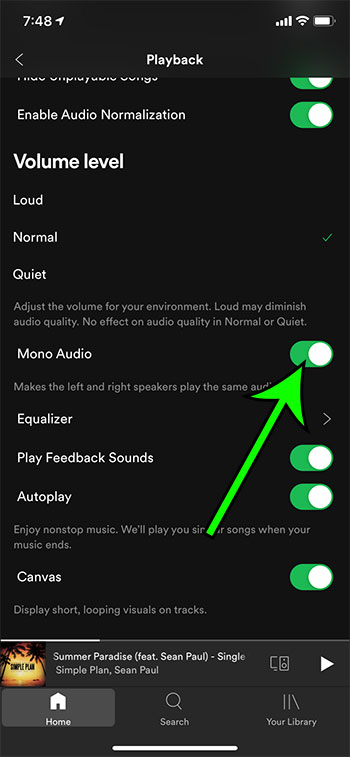 how to switch to mono audio in Spotify on an iPhone