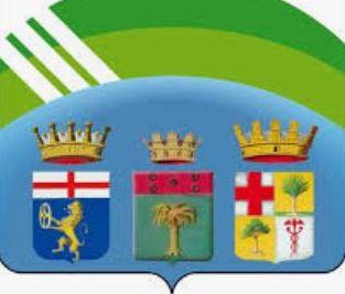 logo municipio VII E