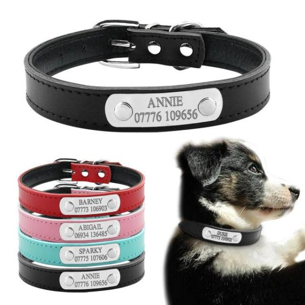 Personalized Leather Laser Engraved Dog Collar