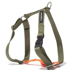 Contrast Nylon Dog Harness