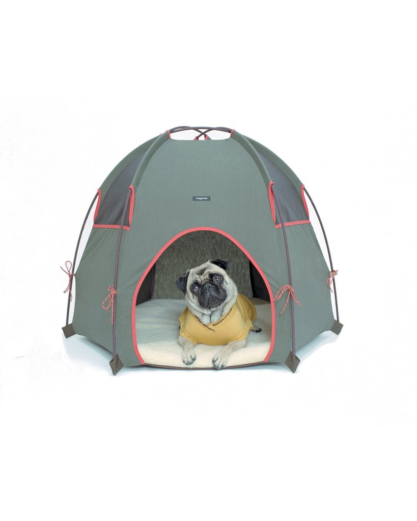 Tee-Pee Dog Lounge