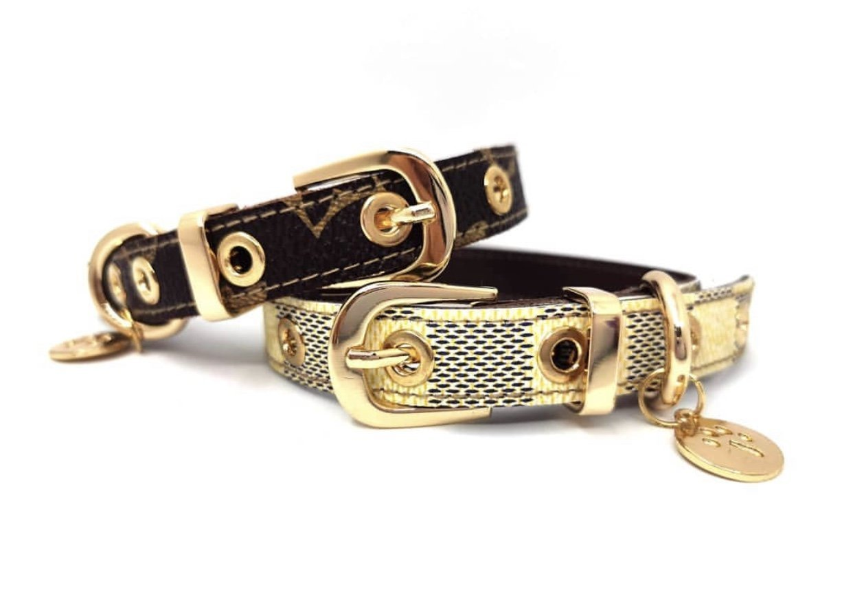 Chewy V Leash & Collar Set