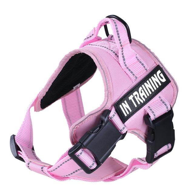 In Training No Pull Dog Harness