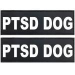 Ptsd Dog