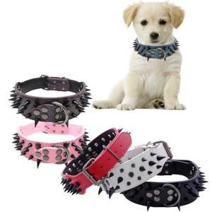 Big Bully Spiked Dog Collar