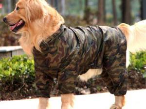 Pawtek Camo Dog Raincoat