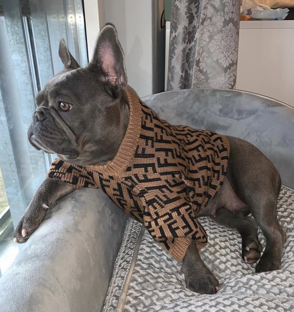 Fur Baby Coffee Dog Sweater - Supreme Paw Supply