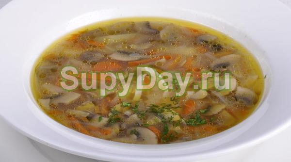 Грибной суп с вермишелью - вкус и польза в одной тарелке ...