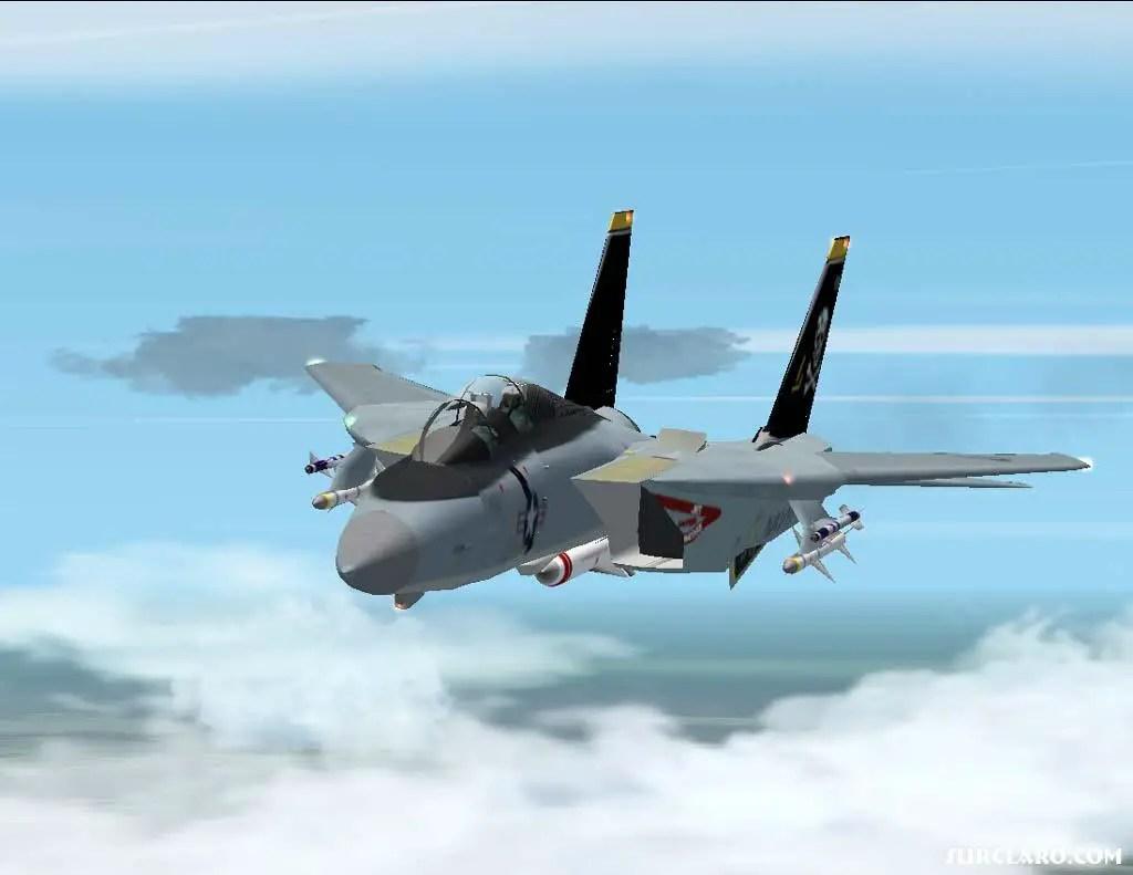 FS2002 F14 Tomcat 5924 SurClaro Photos