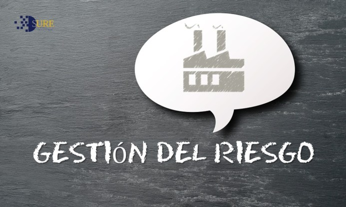 GESTION DE LOS RIESGOS