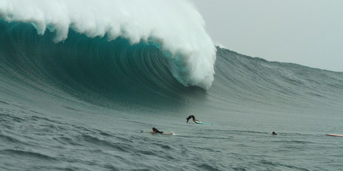 Big-Wave Stress Is Good For You