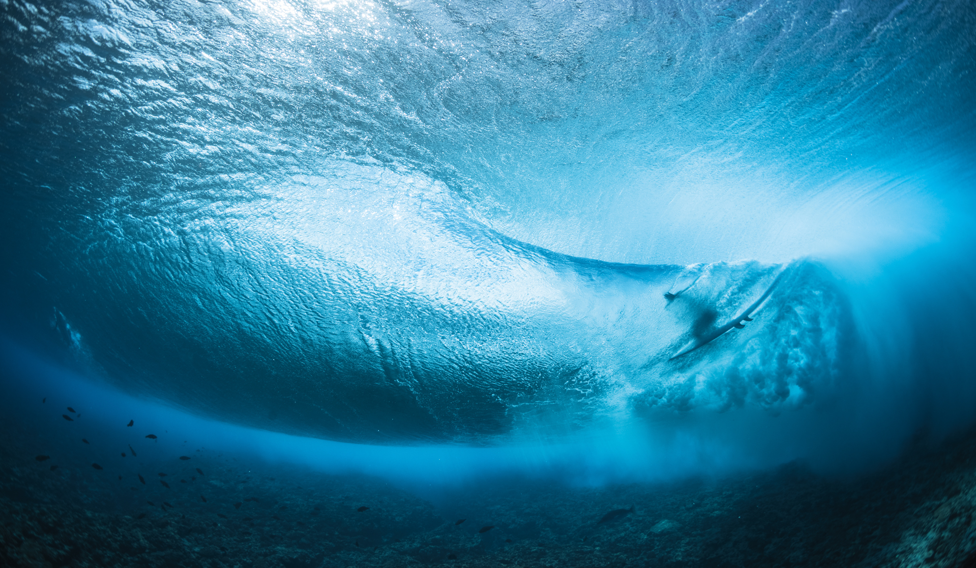 With the 2020 World Tour called off and travel restricted, Teahupo'o has seen a calmer-than-usual surf season—in terms of crowds, certainly not waves.