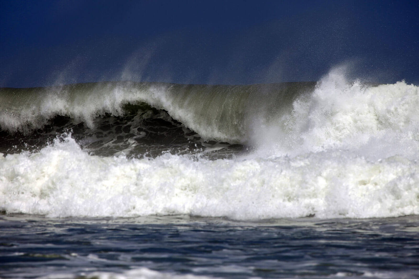 El Nino Resources Surfnetkids