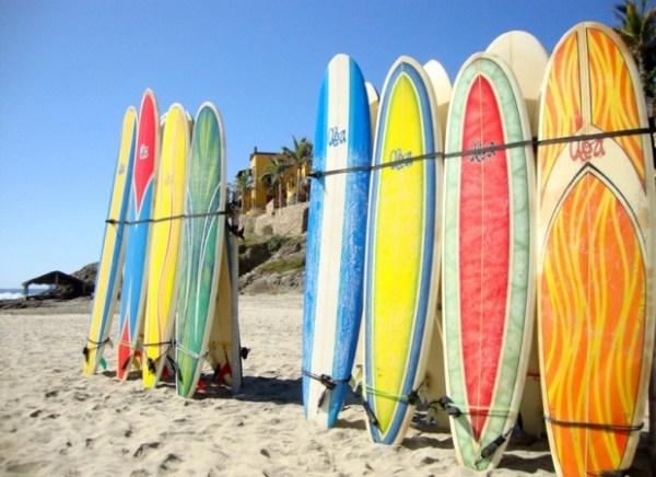 surf board rental