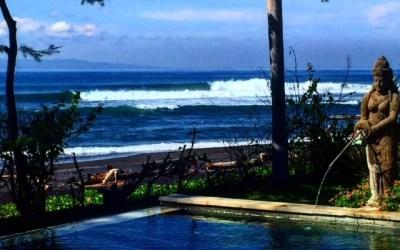 Thank You Surf Travel Guru!