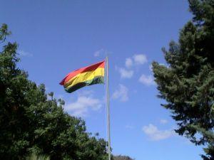 patio flag