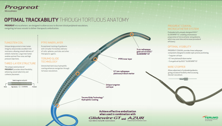Terumo Progreat Catheter distributors in India