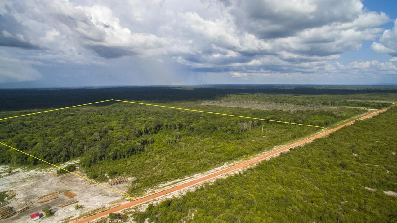 Weg naar Pheadra 56 - Groot terrein geschikt voor meerdere doeleinden - Surgoed Makelaardij NV - Paramaribo, Suriname