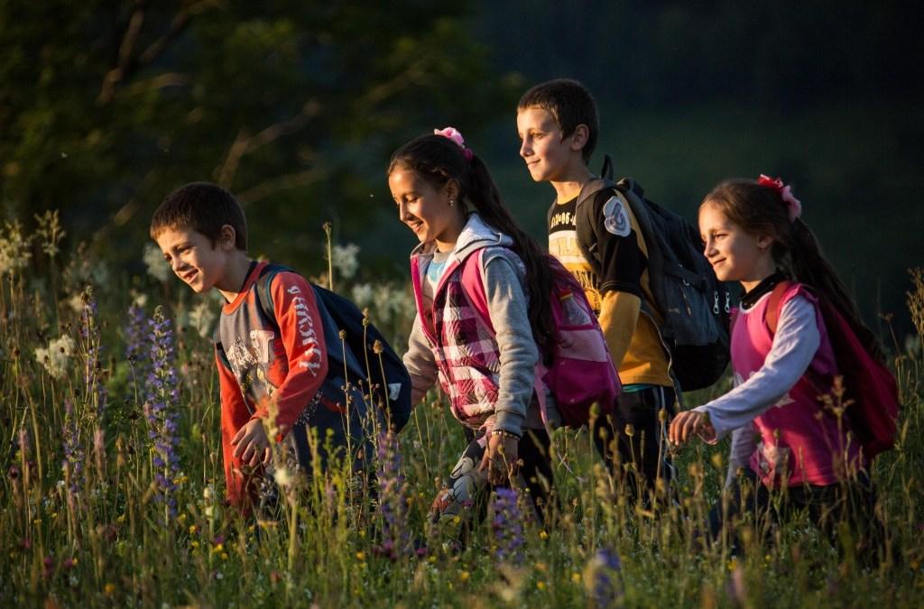 Les Chemins de l'Ecole en Roumanie