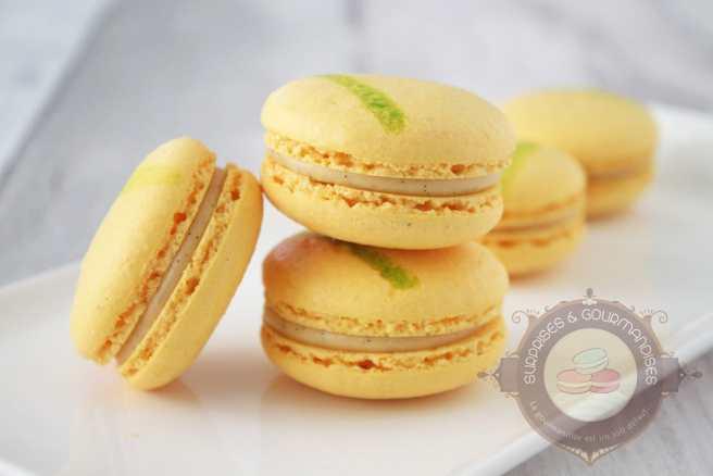 macaron-kalamansi-vanille-citron-vert03