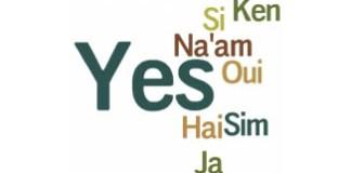 100 farklı dilde evet